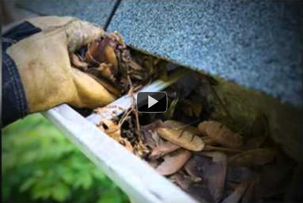 Check out our Rain Gutter Cleaning Video!